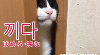 韓国語で「はめる・挟む」の【끼다(ッキダ)】の例文・活用や発音は?