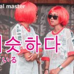 korean-words-similar